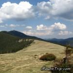 Поход по Карпатам: По заповедным тропинкам / 3 дня, 30 км